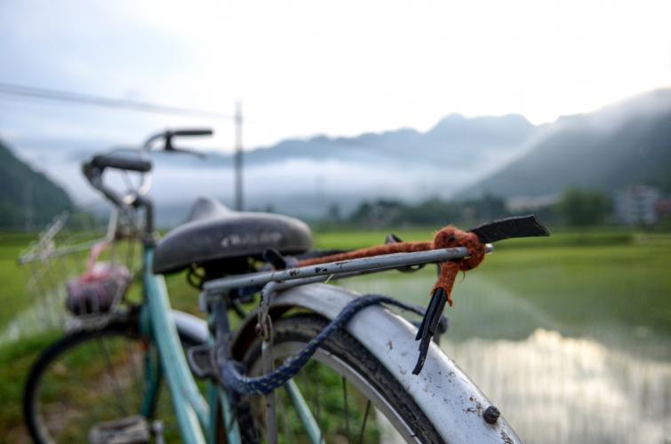 Infomoment Rikolto Classic in Vietnam