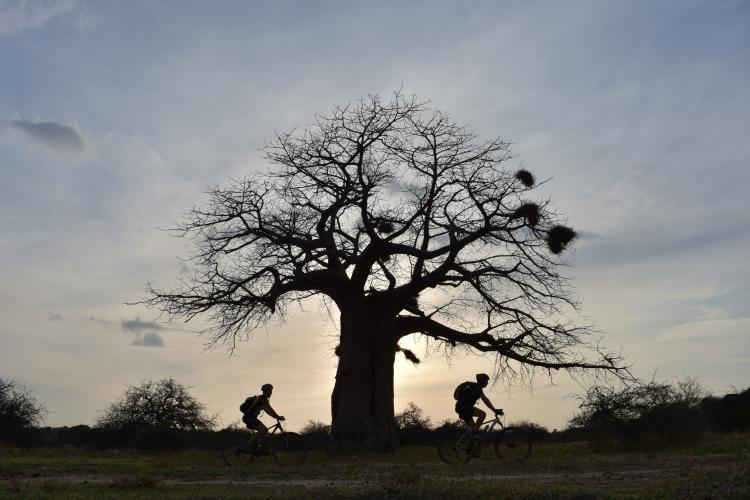 Inschrijvingen voor de Rikolto Classic 2018 Kilimanjaro?