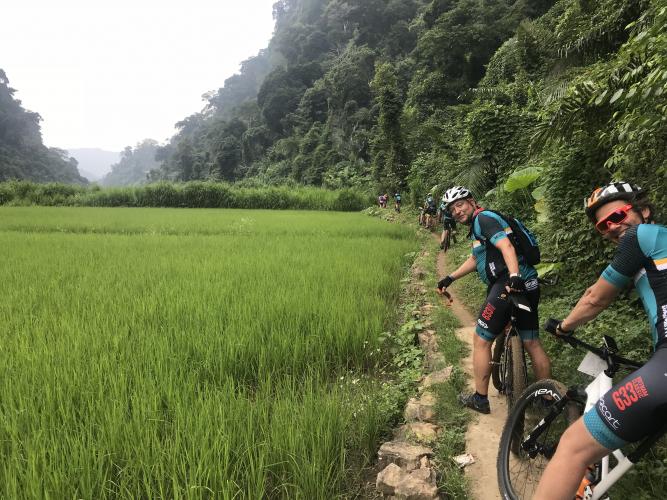 Tussen de rijst - en theevelden